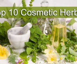 cosmetic-herbs